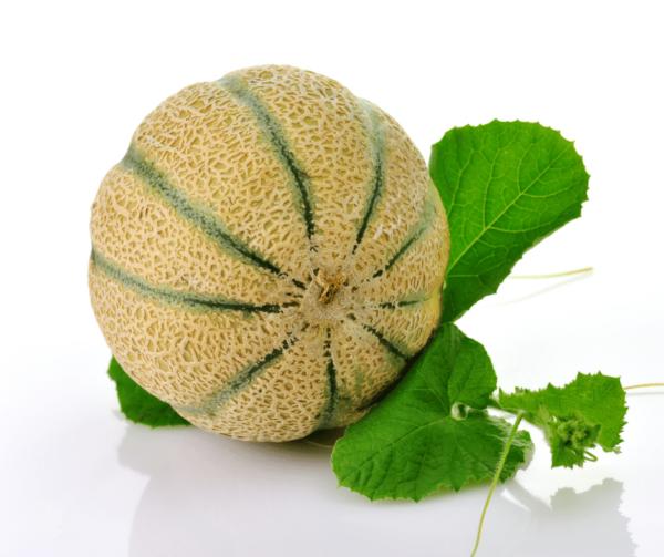 Melone Retato Siciliano