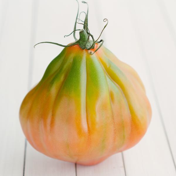 Pomodoro cuore di bue prodotto
