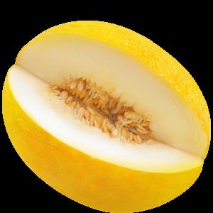 Melone Gialletto di Paceco