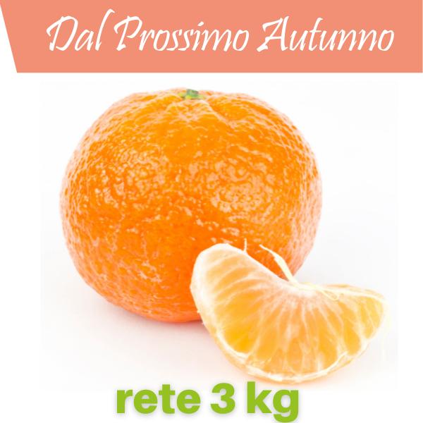 clementine primo sole_rete_3_kg