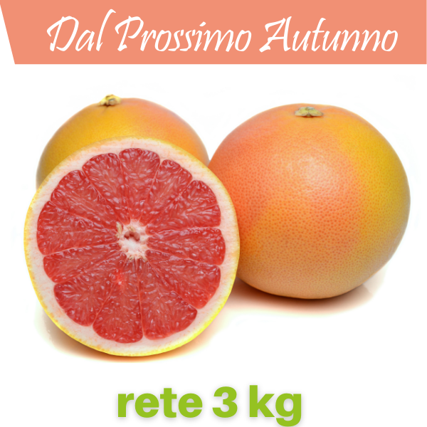 pompelmo_rete_3_kg