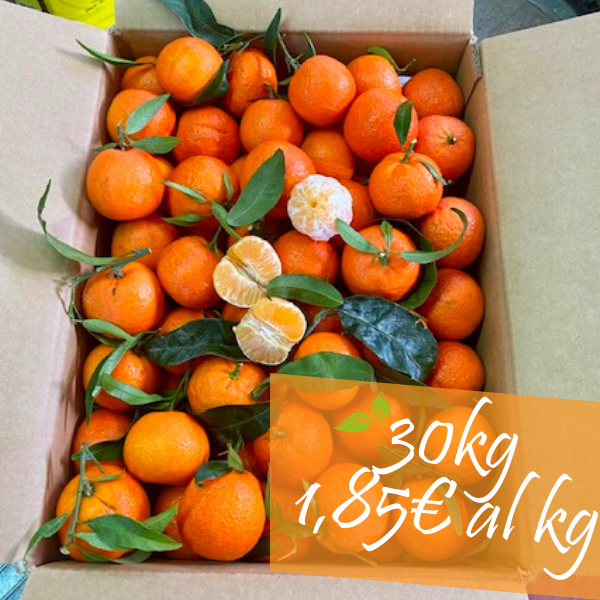 clementine senza semi 30 kg