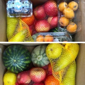 Nuovo Box Frutta