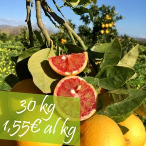 30 kg arance moro