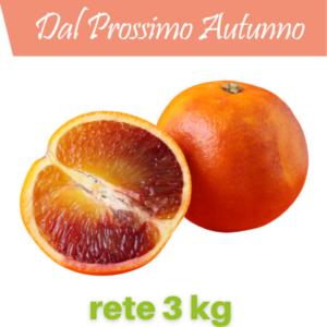 fragolino_rete_3_kg
