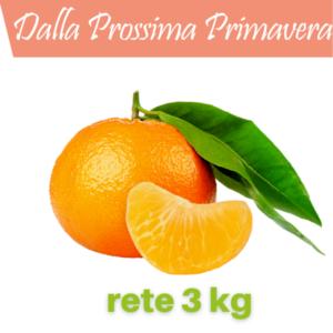 Mandarini senza semi da 3 kg