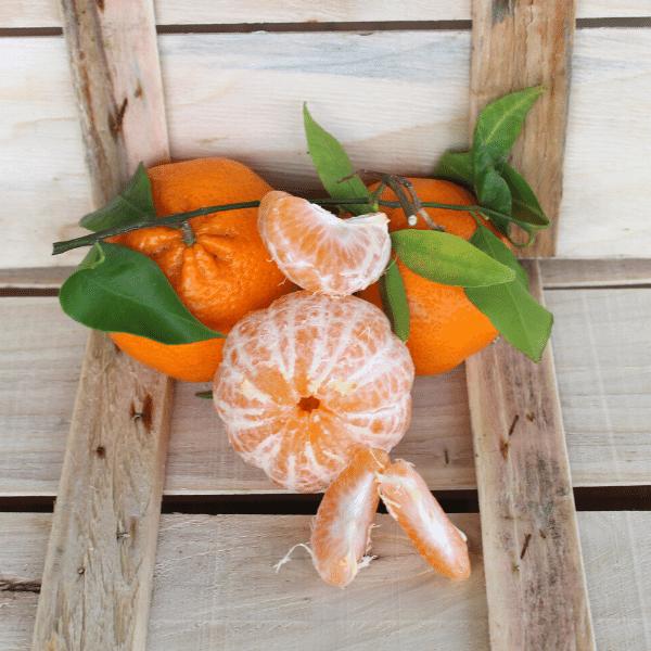 Mandarini tardivi prodotti
