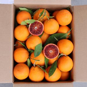 Confezione arance sanguinello da 15 kg