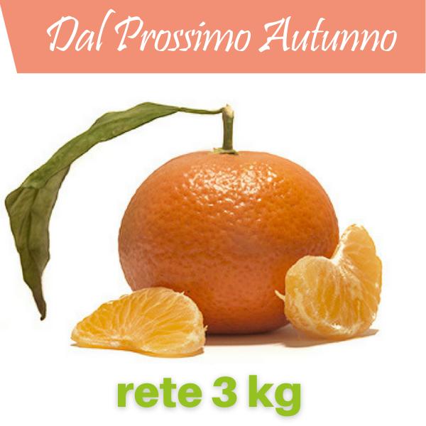 Clementine in rete da 3 kg